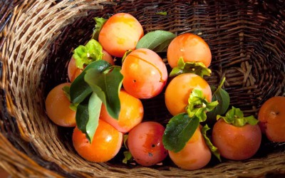 fresh persimmon fruit from the garden